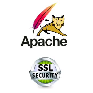tom cat ssl certificate