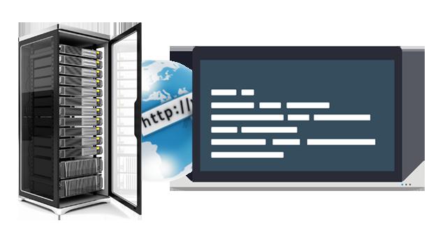 Web Hosting Startup Support